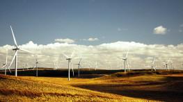 Płytki bezpieczeństwa jako zabezpieczenie elektrowni wiatrowych