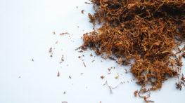 Ocena Ryzyka Wybuchu dla linii do produkcji tytoniu w torebkach