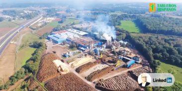 Wybuch pyłu drzewnego w zakładzie produkującym płyty drewnopochodne